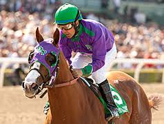 California Chrome-Winner of the 2014 Kentucky Derby-Picture courtesy of Bloodhorse.com